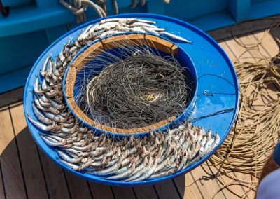 Fishing tourism with long-line in Capri